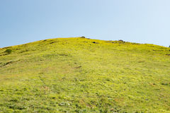 Hill covered with green grass and sky Royalty Free Stock Images