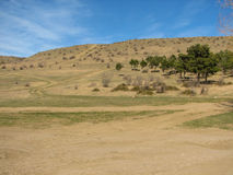 Hill covered of yellow grass under clear blue sky Stock Image