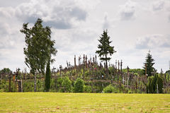 Hill of Crosses near Siauliai. Lithuania Stock Images