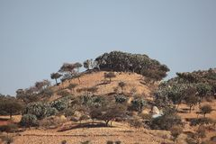 Hill in Ethiopia. A hill in the Northern Ethiopian Mountains stock photography
