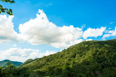 Hill Evergreen Forest,Khao Yai National Park ,Thailand Stock Images