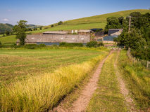 Hill Farm, England Stock Image