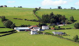 Hill farm, with houses royalty free stock photo