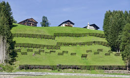 Hill farmsteads and avalanche barriers Stock Photo