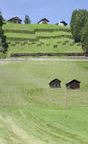 Hill farmsteads and avalanche barriers Stock Image