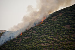 Hill on fire in Sardinia. After a windy day Stock Images