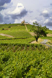 Hill of Fleurie Village with a cloudy sky, Beaujolais, France Stock Photo