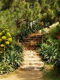 Hill Garden. And steps upward Royalty Free Stock Photos