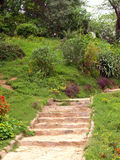 Hill Garden. And steps upward Royalty Free Stock Image