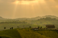 Hill with golden sunlight Royalty Free Stock Images