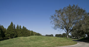 Hill on a Golf Course. Grassy small hill on a golf course with trees Stock Image