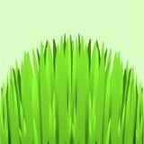 Hill Green Grass Stock Photography