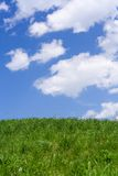 Hill green grass blue sky 2 Royalty Free Stock Image