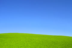 Hill with green grass and blue sky Stock Photo