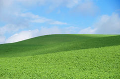 Hill with green grass. With blue sky over the hill stock photo