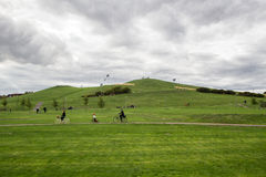 Hill green. Green hill in the park Royalty Free Stock Image