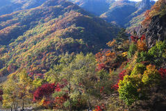 Hill. In Jilin Province, China Royalty Free Stock Image