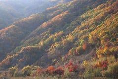 Hill. In Jilin Province, China Stock Photo
