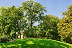 Hill And Lawn In The Summer Empty City Public Park Royalty Free Stock Image