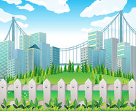 A hill with many pine trees near the tall buildings Stock Images