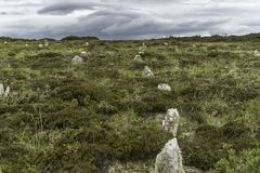 The hill of many stanes place stock photo