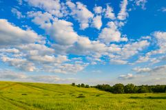 Hill meadow sky. Hilly terrain in a meadow village with green grass pasture against a blue sky with white clouds Royalty Free Stock Photo