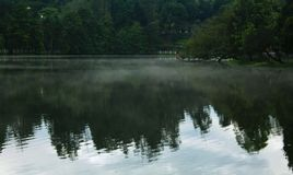 Hill mist on the kodaikanal lake at early morning with reflections. Kodaikanal is a city near Palani in the hills of the Dindigul district in the state of stock images