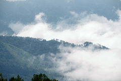 Hill mountain foggy in morning Royalty Free Stock Images
