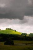 hill nasłoneczniony Obrazy Royalty Free
