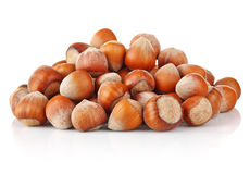 Hill nut. On white background Royalty Free Stock Photo
