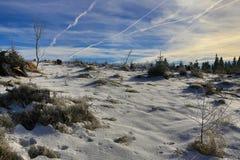 Hill Pancíř, Cloudes and trees, winter landscape in Šumava in Železná Ruda, czech republic Stock Image