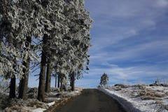 Hill Pancíř, Cloudes and trees, winter landscape in Šumava in Železná Ruda, czech republic Stock Images