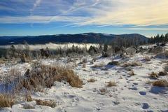 Hill Pancí�, Cloudes and trees, winter landscape in Šumava in Železná Ruda, czech republic Stock Images