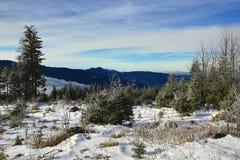 Hill Pancíř, Cloudes and trees, winter landscape in Šumava in Železná Ruda, czech republic Royalty Free Stock Photo