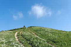Hill in paris suburb Stock Photography