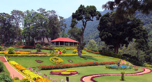 Hill park. Flowers with trees and trimmed plants kateri park near ooty, tamilnadu, india stock images