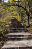 Hill path royalty free stock photo