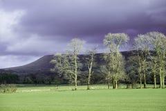 Hill Pendle κοντά σε Clitheroe στην κοιλάδα Ribble Στοκ Φωτογραφία