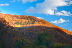 Hill. This photo was taken in a fall afternoon, in northeast China Stock Photo