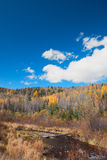 Hill. This photo was taken in a fall noon, in northeast China Stock Images