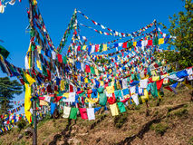 Hill with prayer flags, Dharamsala Royalty Free Stock Photos