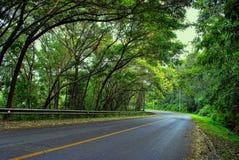 hill road Zdjęcia Stock