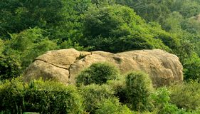 The hill rock with trees landscape. Wonderful tropical hill landscape of sittanavasal cave temple complex. Sittanavasal is a small hamlet in Pudukkottai district Royalty Free Stock Image