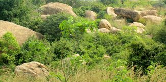 Hill rocks of sittanavasal cave temple complex. Stock Photos