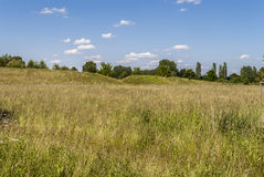 On the Hill. Rural spot - bright day - clear sky Royalty Free Stock Photo