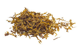 Hill of the scattered tobacco. Stock Photography
