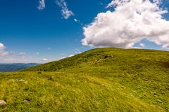 Hill side meadow in summer. Green grass on hillside meadow in high mountains under the cloudy blue sky royalty free stock photos