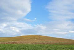 Hill and sky. Green hill and blue sky in sicily stock photo