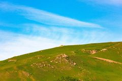 Hill slope Royalty Free Stock Images