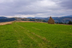 Hill before storm. Hill with sheaf before a storm Royalty Free Stock Photo